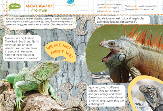 About Iguanas